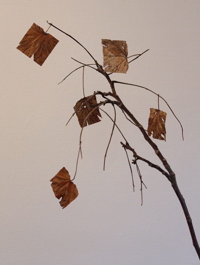 Foto eines Kunstwerkes: Ast mit quadratisch zugeschnittenem Laub
