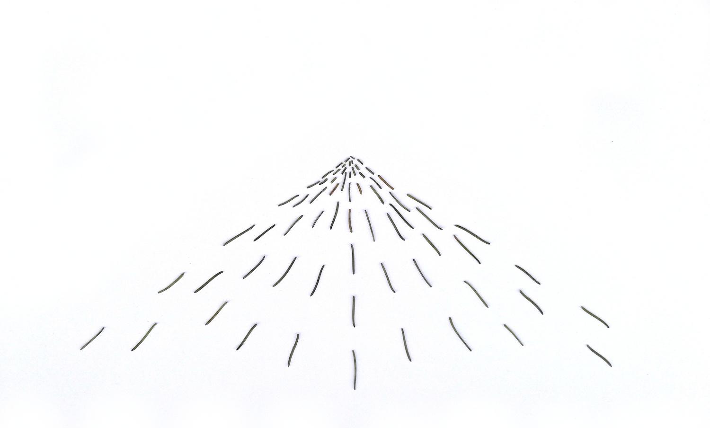 Tannennadeln geometrisch angeordnet auf einem weißen Blatt Papier